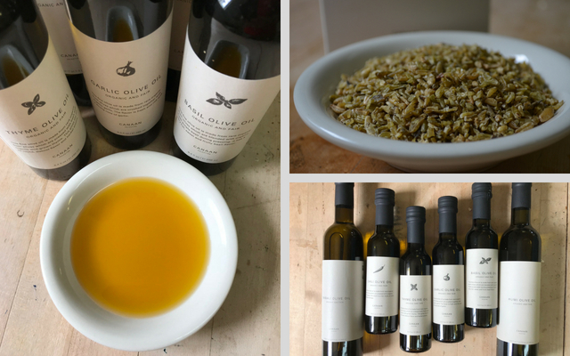 Fair Trade Canaan Products- Olive Oil and Freekeh- from Koinonia Farm